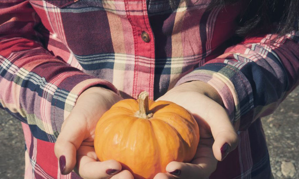 October Field Trips