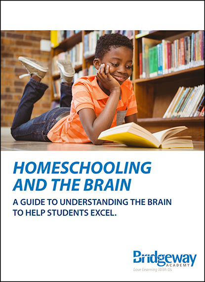 , Homeschooling and the Brain